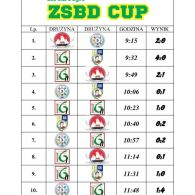 ZSBD-CUP-1
